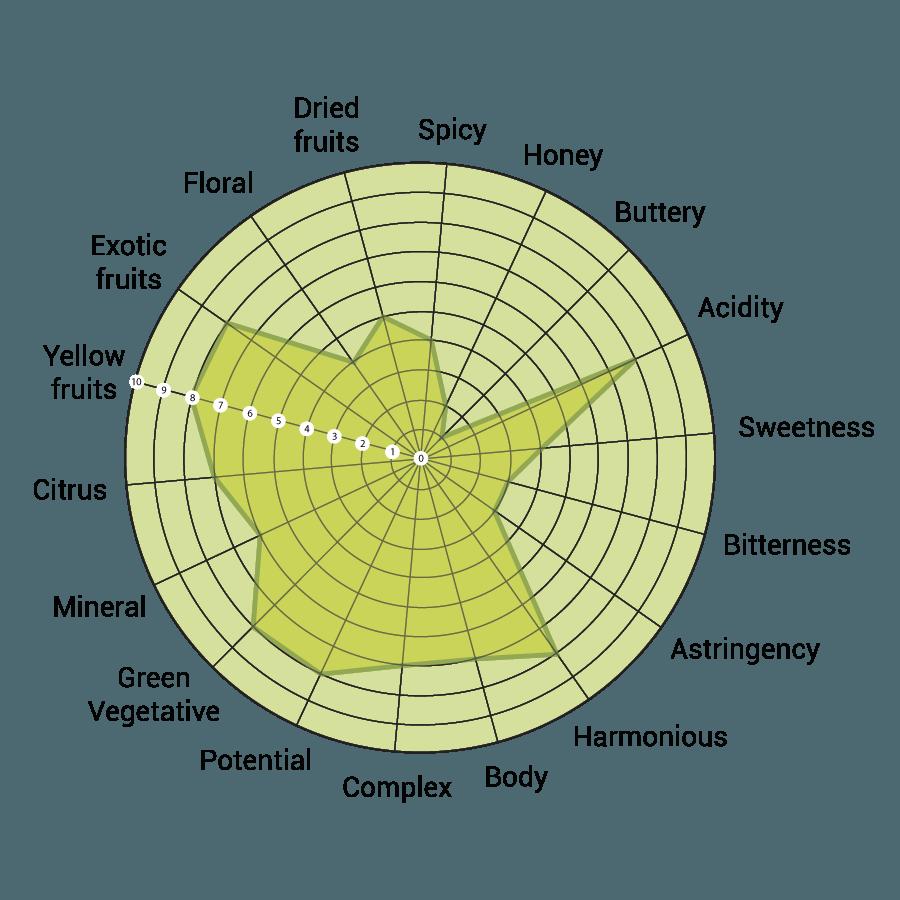 trebbiano-sensory-analysis